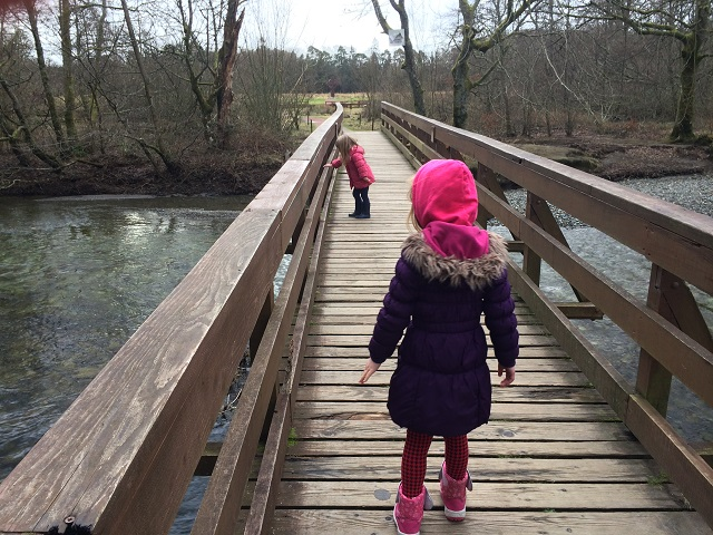 River walk by River Cottage